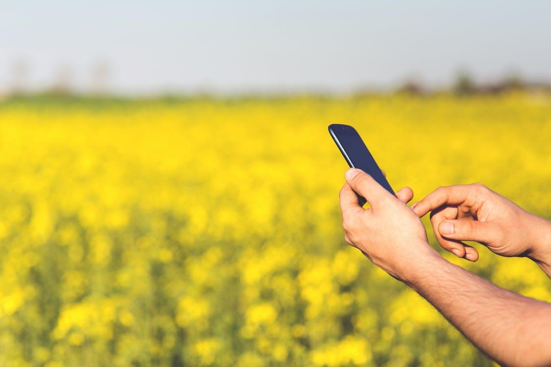 Novas tecnologias para gestão no agronegócio